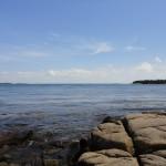 DSC00953 150x150 Jonesport / Great Wass Island Preserve