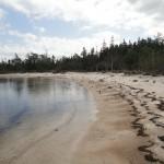 DSC01005 150x150 Jonesport / Great Wass Island Preserve