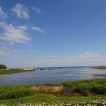 DSC01043 150x150 Jonesport / Great Wass Island Preserve