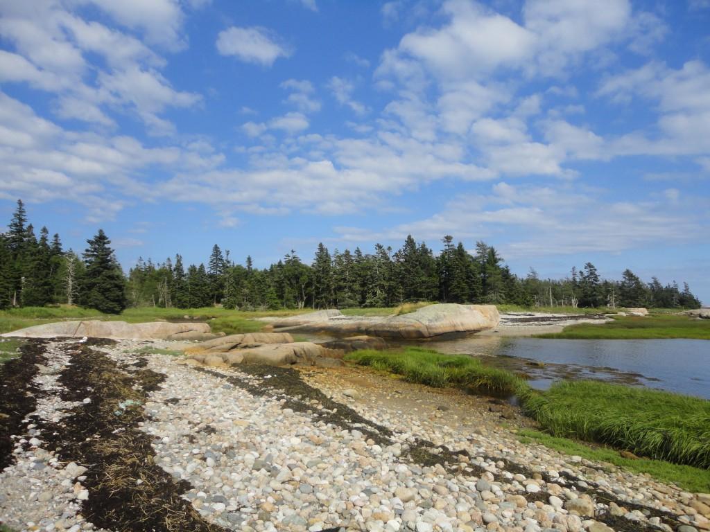 Great Wass Island Preserve