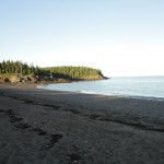DSC01124 150x150 Bay of Fundy / Campobello Island